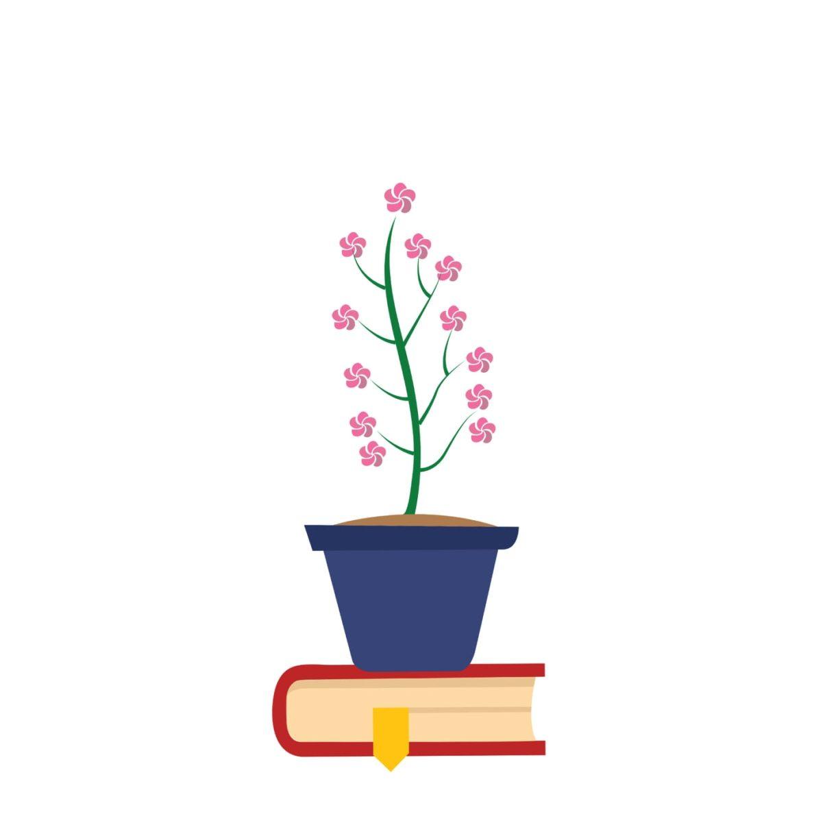 Little Blossoms Nursery School